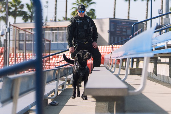 Photograph of the K9 Team